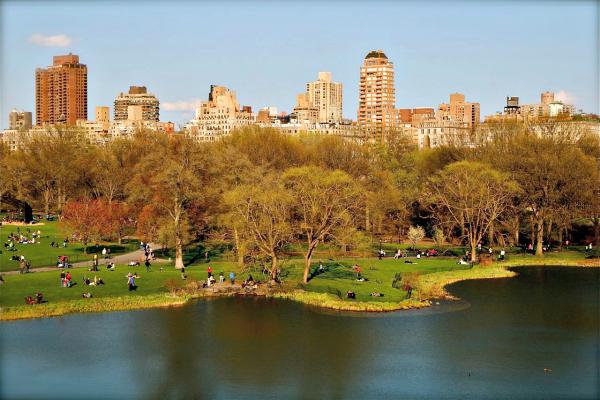 Central Park Spring Walk
