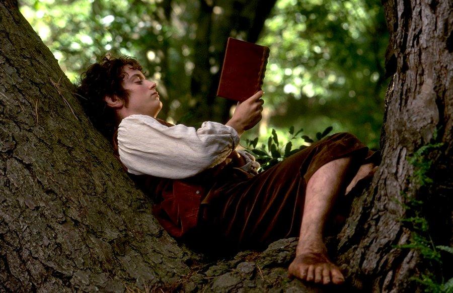 Frodo-reading