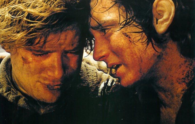 Captivating Frodo Sam
