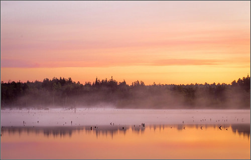 pine barrens sunrise