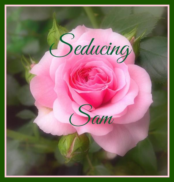 seducing sam